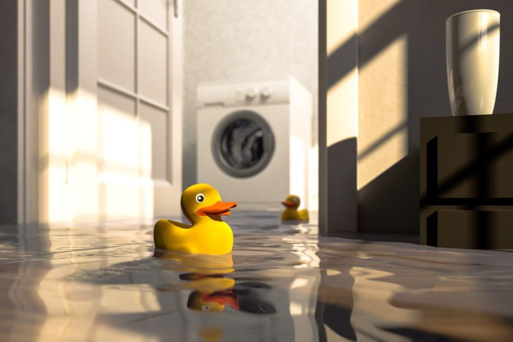 rubber ducky flood